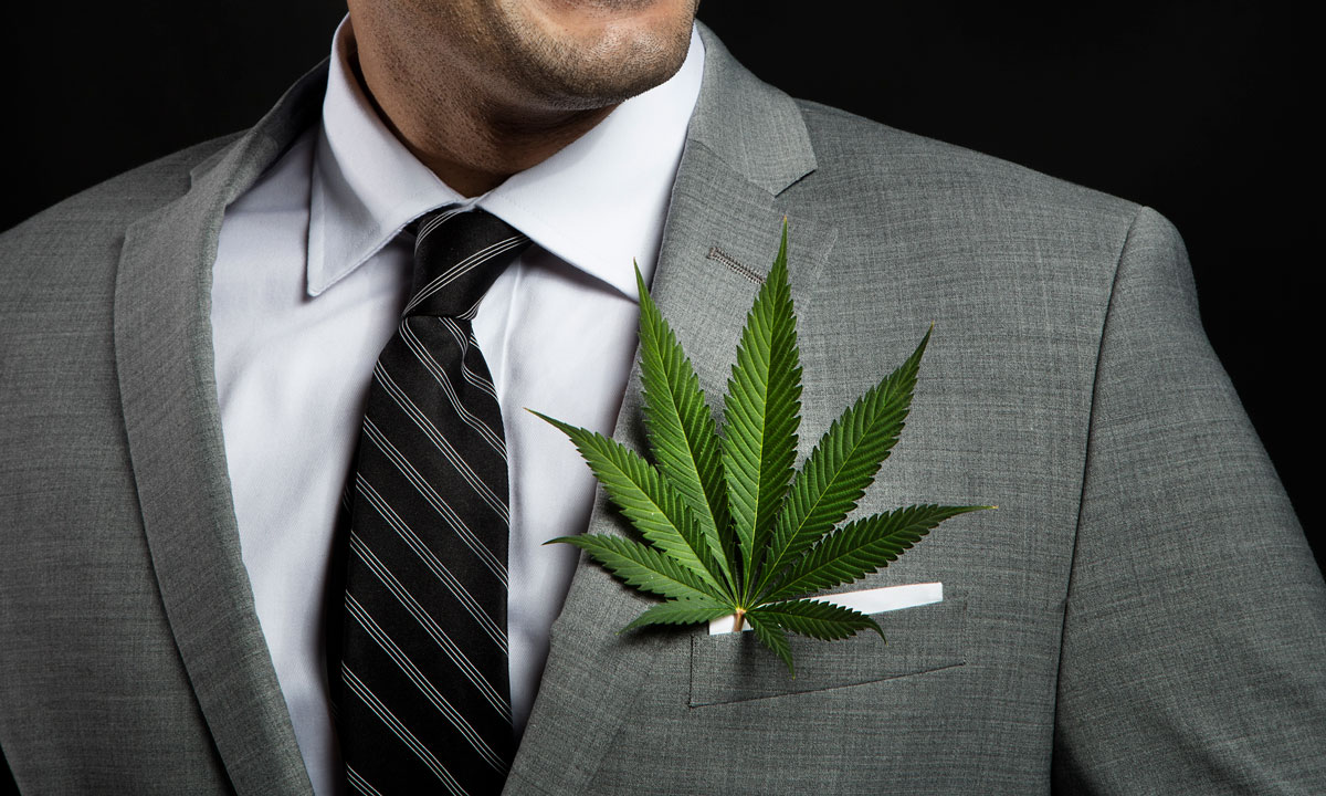 Your Cannabusiness vs The Tax Man